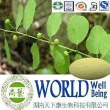 Hot sale Securinega suffruticosa extract/Securinine 20%/Securinega extract/Activate blood plant extract