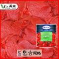 Origen China aplastado tomate