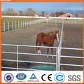 galvanizado de tubos de metal de ganado corral paneles de la cerca para los caballos
