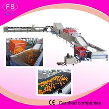 vegetable sorting machine/vegetables and fruits processing machine/washing and drying machine
