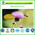 Mariendistel pflanzenextrakt pulver silybin