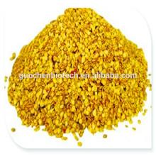 sweet paprika seeds