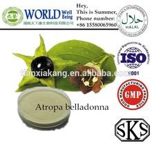 Atropa Belladonna Liquid Extract,Atropa Belladonna Extract,Belladonnae Herb Extract