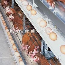 Poultry Equipment/Chicken Farm/Chicken Layer Cage Designs