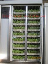animal fodder sprouting machine on sale