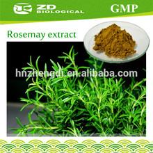 Food Additives rosmarinic acid 20% rosemary oleoresin extract