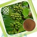 Los ácidos clorogénico 50%, extracto de café verde en polvo, grano de café verde cápsulas de extracto