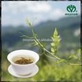 Gmp chá orgânico Moyeam chá chinês herb