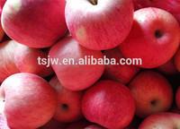 2015 Chinese qinguan apple china apple fruit market red sweet qinguan apple