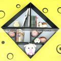 Conception personnalisée et oem clair mural. plateau cube durée de vie de champignons séchés