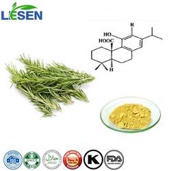 Factory supply Rosemary Extract Extract Carnosic Acid