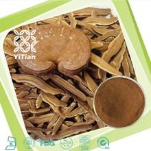 Hot selling high quality organic reishi mushroom extract powder (Ganoderma lucidum extract)