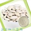 100% natural de riñón blanca extracto faseolina 1% 2% en polvo