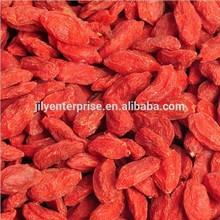 chinese wolfberry goji berries,whole foods goji berry ,dried Lycium chinensis