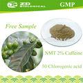 Bajo precio de alta calidad de grano de café verde 25% extracto de ácido clorogénico en polvo