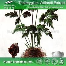 Tripterygium Wilfordii Extract Powder, Tripterygium Wilfordii Powder, Tripterygium Wilfordii P.E.
