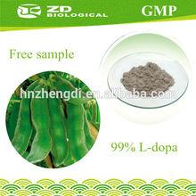 Herb Medicine 100% natural mucuna pruriens extract 99% l-dopa