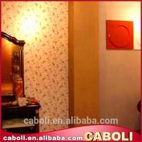 Caboli roller acrylic exterior paint texture designs