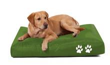 Simple Soft Fashion Pet Cushion