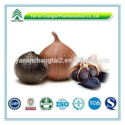 GMP Certificate Popular Herbal Black Garlic P.E. By UV