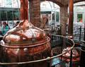 Micro cerveza de malta de vino que hace el equipo de malta de cebada para la producción de cerveza de malta individuales( zd- 50)