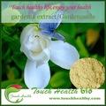 fournir touchhealthy gardenia extrait pour les maladies cardiovasculaires