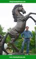 2015 venda quente decoração moderna de bronze de tamanho natural de burro