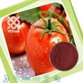 100% puro pó de tomate, o extrato de tomate, licopeno pó