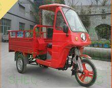 Motorcycle three wheel motor rickshaw 1000w