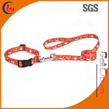 Custom Dog Leashes and Collar