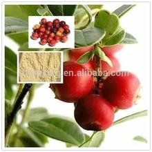 Factory supply 100% natural Camu Camu Fruit Powder Vitamin C 20% 25%