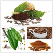 dutch alkalized cocoa powder/low fat cocoa powder/dutch process cocoa powder