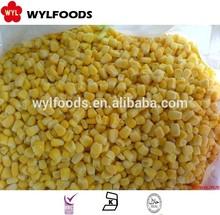 high quality frozen sweet corn