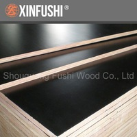 Finger joined core,waterproof glue,black Film faced plywood popular in Middle east market
