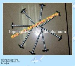 Smooth twist shank umbrella roofing nails galvanized