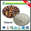 горячие продажа природного пальметто экстракта 25% 45% жирных кислот