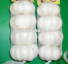 2015 new crop fresh pure white Garlic