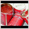 الغذاء دبي المستوردين/ معجون الطماطم يمكن الأحجام/ الطماطم في دبي