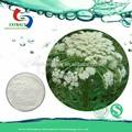 pure natural herbal poudre de fruits cnidium monnieri extrait