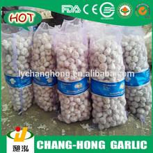 [HOT] Pizhou Garlic