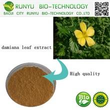 China plant factory supplying damiana leaf extract