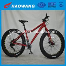 2015 New Model High Quality 20 Speed Snow Fat Bike