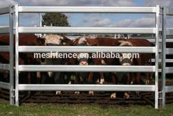 Cattle / Horse Panels , 6 bar Oval Rails 60 x 30, 40 x 40 Posts