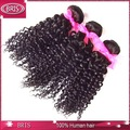 sans enchevêtrement aucun rejet naturelle afro extensions de cheveux