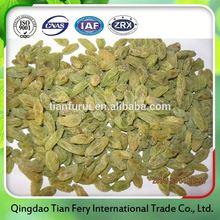 green raisin of dried fruits health benefits