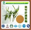 Pure natural 5% flavonas folhas de bambu extrato de pó