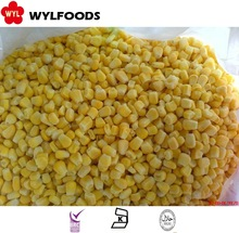 high quality frozen sweet corn hot sale