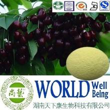 Hot sale Black cherry extract /Vitamin C 17%-25%/Treat scurvy factory supply