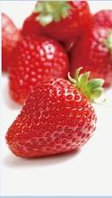 china good price frozen strawberry hot sale