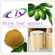 Competitive price Hydroxytyrosol 2.5%-40% Olive Leaf extract powder